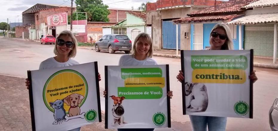 Voluntárias L.O.B.O.   Foto: Divulgação