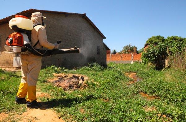 Agentes fazem borrifação nos bairros   Foto: Divulgação