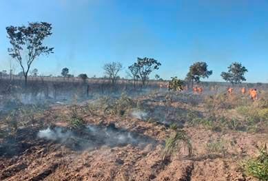 Aiba-apresenta-balanco-do-trabalho-de-combate-a-incendios-florestais-em-2015-01