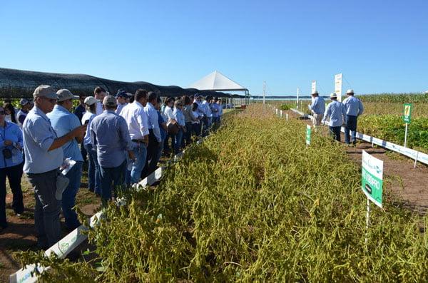 O Evento aconteceu no Campo Experimental da Fundação Bahia | Foto: Virgília Vieira