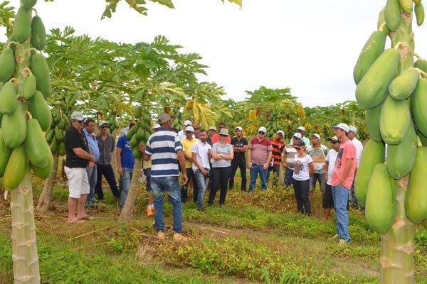 Aula prática de Fruticultura, na Fazenda Agronol | Foto: Virgília Vieira/Ascom Abapa