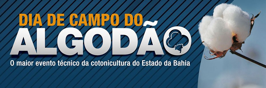 Dia-de-Campo-do-Algodao-acontece-no-proximo-sabado-cp-flash