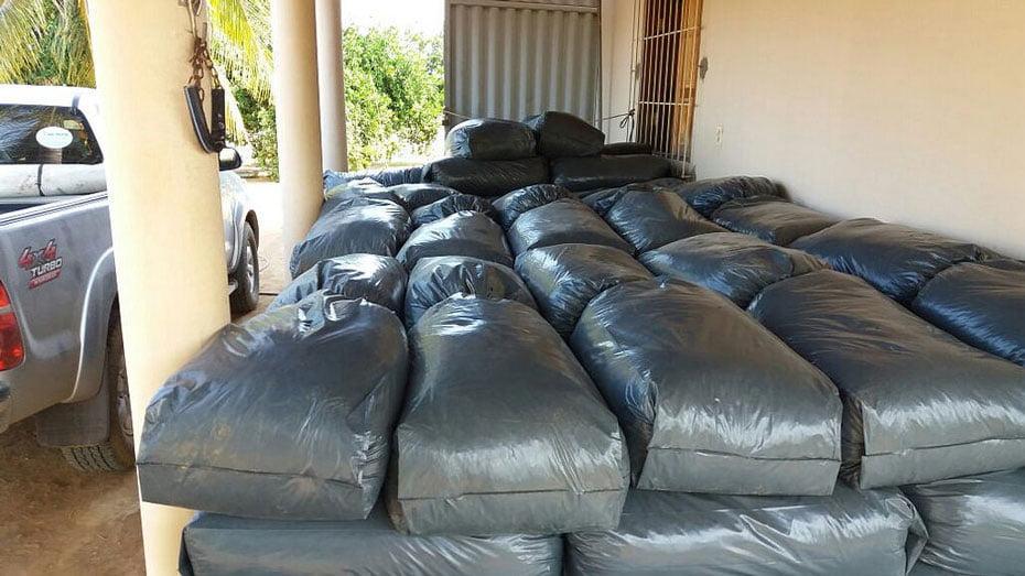 irrigantes-de-projeto-da-codevasf-descobrem-na-silagem-boa-alternativa-de-renda-em-tempos-de-seca-02