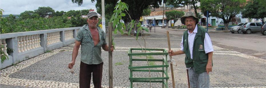 06 - Ruas-de-Barreiras-recebem-plantio-de-mudas-do-Cerrado-cp-flash